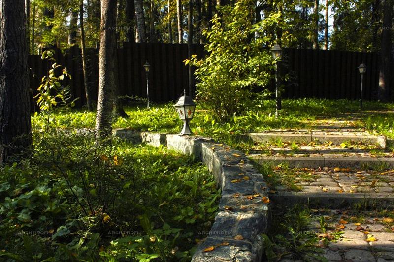 Лесной стиль в ландшафтном дизайне
