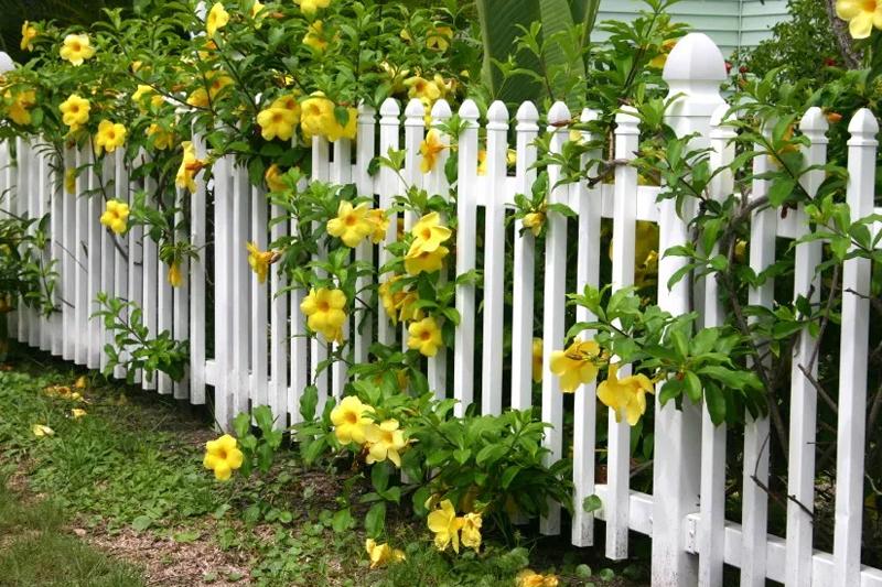 Декорирование и оформление заборов и садовых ограждений